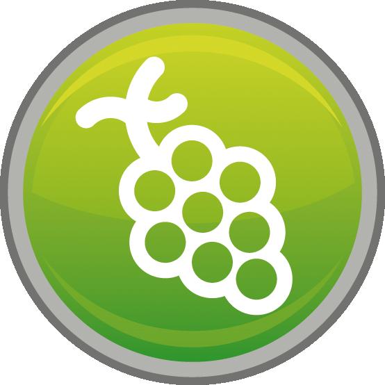 icon druif