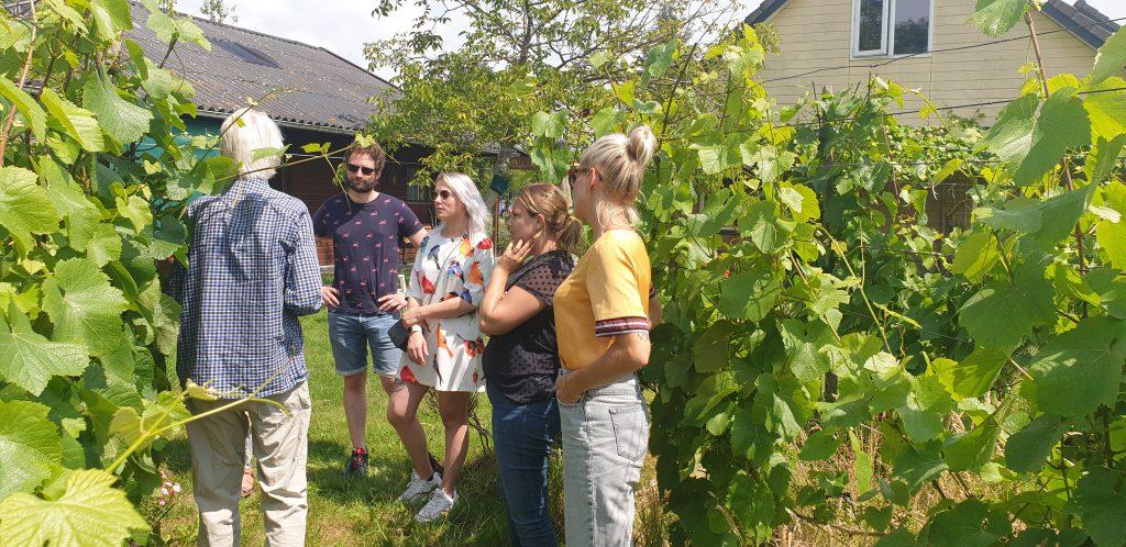rondleiding door de wijngaard