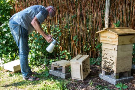 De imker geeft bijen van El Placer verkoeling