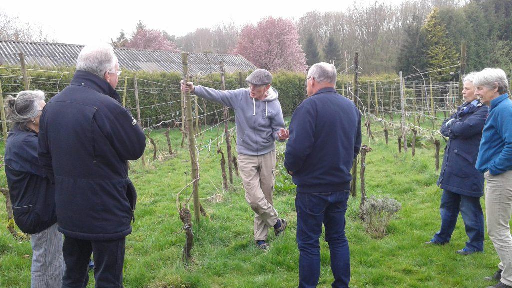 workshop biologische wijnbouw